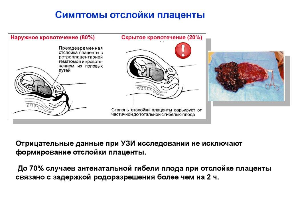 Nelly Bidzhieva - clairvoyant: yorumlar, adresler, tahminler 11